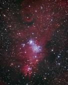 VC200L天文攝影:NGC2264
