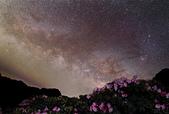 天文攝影24mm F1.4L:合歡杜鵑與夏季銀河地對話