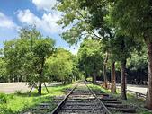 風景攝影精華:東豐綠色走廊旁