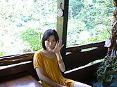 歡樂山行玫瑰:P1050669.JPG