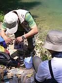 日月潭釣魚趣:P1050385.JPG