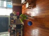 我愛玩的球:第八週_180901_0092.jpg