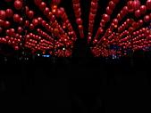 2011 台灣燈會:1000220 042.jpg