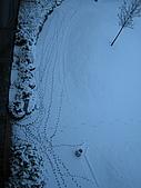 三月 冬末.初春:IMG_3322.JPG