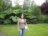 Cantebury& Leeds Castle:IMG_0456