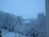 三月 冬末.初春:IMG_3315.JPG