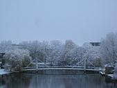 三月 冬末.初春:IMG_3325.JPG