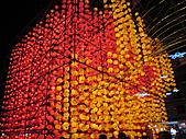 2011 台灣燈會:IMG_1291.JPG