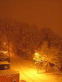 三月 冬末.初春:因路燈的關係,變的黃黃的