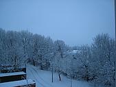 三月 冬末.初春:IMG_3317.JPG