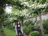 Castle Howard :我喜歡花園