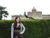 Castle Howard :我和孔雀