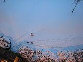 三月 冬末.初春:IMG_3312.JPG