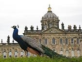 Castle Howard :Peacock and Castle Howard