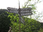 99' 二月的九族文化村:IMG_0640.JPG
