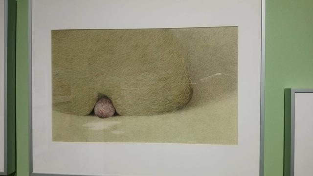 波隆納畫展 (76).jpg - 波隆那畫展