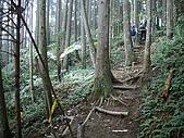 075~鵝公髻山至山上人家順遊清泉風景區:與左方的第二登山口交接處