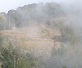 075~鵝公髻山至山上人家順遊清泉風景區:回首來時路