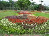 大安森林公園970413:IMG_0084.jpg