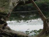 龍潭湖&羅東林業文化園區2012.03:IMG_1947.jpg