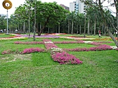 大安森林公園970413:IMG_0078.jpg