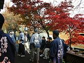 2008年秋日本賞楓紅葉之旅:保津川乘船場的船夫們