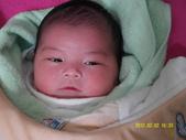 20120205:SAM_0083.JPG