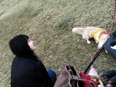 你們和我家狗兒:1905190469.jpg