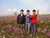 //埔里之花卉//:1645980358.jpg
