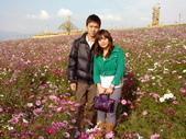 //埔里之花卉//:1645980359.jpg