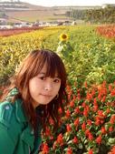 //埔里之花卉//:1645980372.jpg