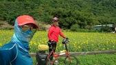 單車環島:nEO_IMG_20200408_200604_0034.jpg