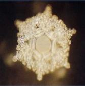 2007信而有徵:水的結晶~讀愛、感謝.jpg