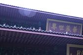 弘聖上師 法語詩偈:C師父在華嚴殿外說法鴿子們陸續駐足聆聽.JPG
