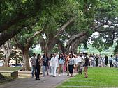 2017活動花絮:大家與 師父一起走在綠蔭盎然的東海大學文理大道,如沐春風   .png