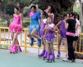 大台南民俗花式溜冰表演隊:IMG_8215aa.jpg