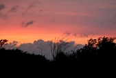 台南市安平區四草大橋下拍夕陽:IMG_1533aa.jpg