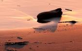台南市安平區四草大橋下拍夕陽:IMG_1498aa.jpg
