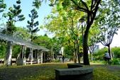 台南市阿勃勒花:IMG_0044aaa.jpg