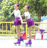 大台南民俗花式溜冰表演隊:IMG_7508aa.jpg