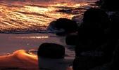 台南市安平區四草大橋下拍夕陽:IMG_1508aa.jpg