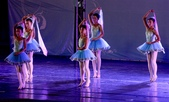 2015年9月5日台南市文化中心假日廣場舞蹈表演:IMG_2275b.jpg